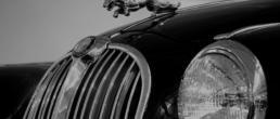 Closeup of Jaguar hood ornament